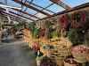 Image 6 of Russell's Garden Center, Wayland