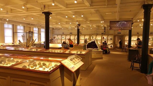 List item Harvard Museum of Natural History image