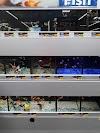 Image 8 of Walmart, Conway