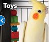 Image 4 of PetSmart, Westerly