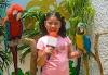 Indicaciones para llegar a Kids parties in Mexico Ciudad de México