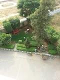 HUDA Park in gurugram - Gurgaon