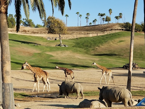 Popular tourist site San Diego Zoo Safari Park in San Diego