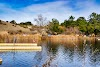 Image 8 of Foothills Park, Los Altos Hills