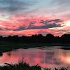 Image 8 of Forest Lake Golf Club, Ocoee