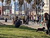 Image 2 of Venice Beach, Venice