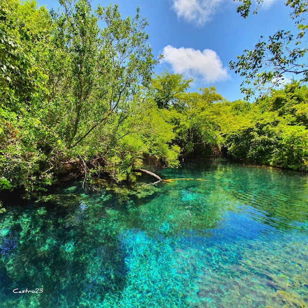 Popular tourist site Indigenous Eyes Ecological Reserve in Punta Cana