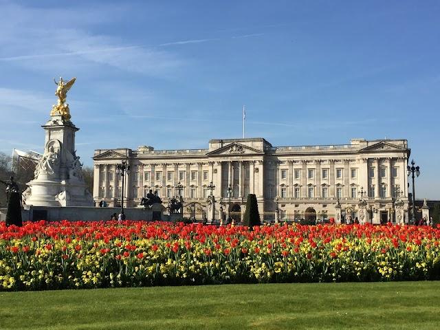 Buckingham Palace image