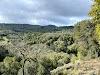 Image 7 of Foothills Park, Los Altos Hills