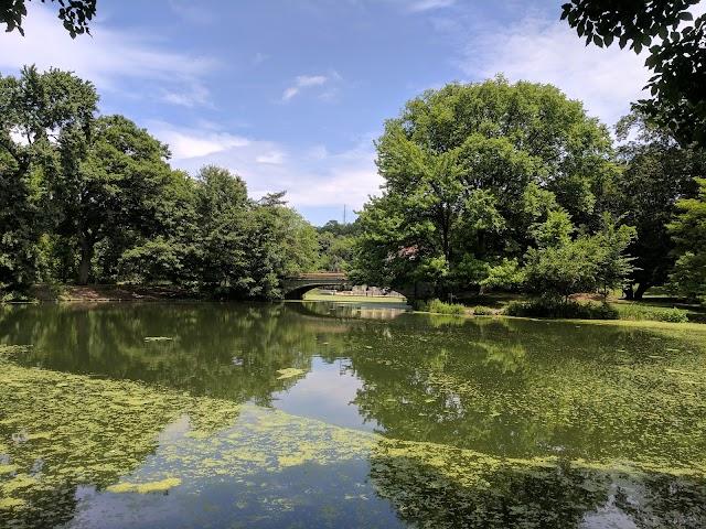 List item Prospect Park image