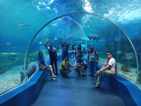 Popular tourist site Manila Ocean Park in Manila