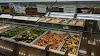 Image 8 of Whole Foods Market, Pembroke Pines