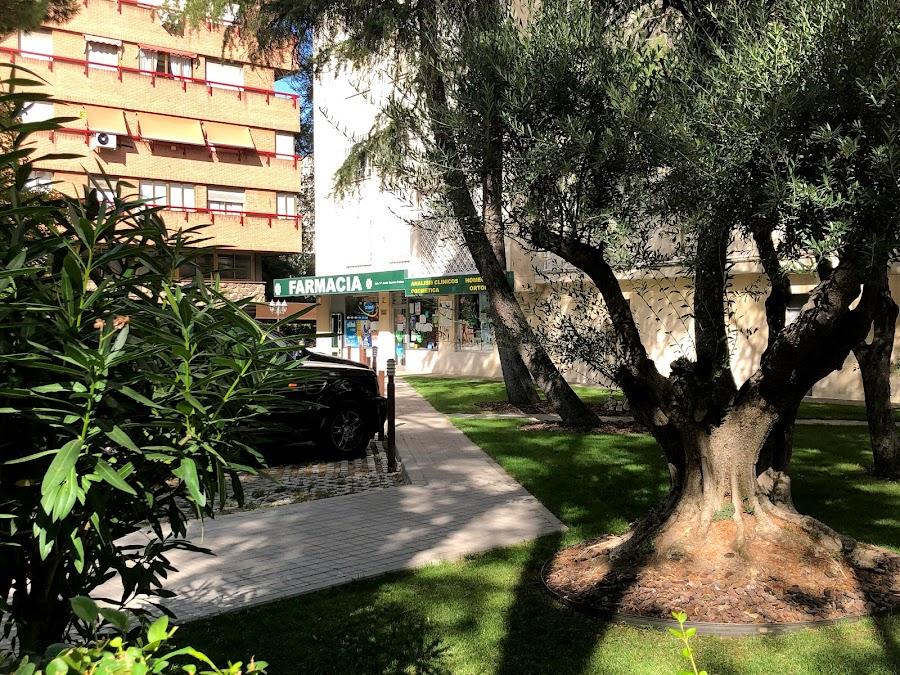 Foto farmacia Sarrión Pelous María Jesús