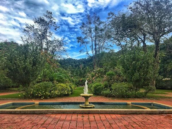 Popular tourist site Penang Botanic Gardens in Penang