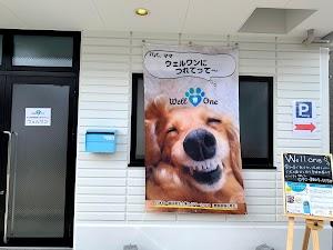 犬のデンタルケア・ウェルワン🐶