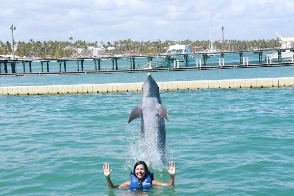Popular tourist site Dolphin Explorer in Punta Cana