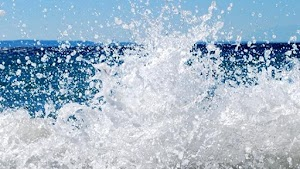 Shoreline Pressure Washing | Bluffton Pressure Washing