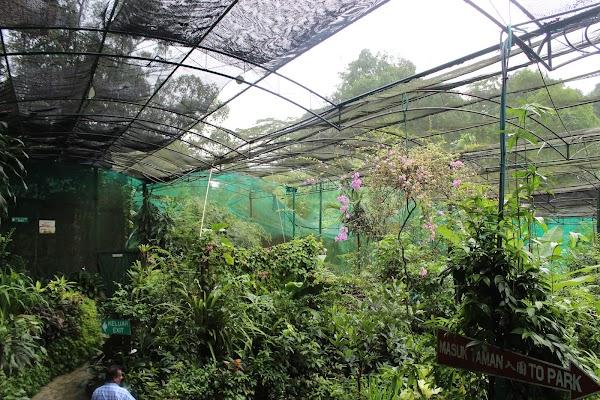 Popular tourist site Kuala Lumpur Butterfly Park in Kuala Lumpur