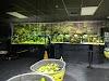 Image 7 of Aquarium Adventure, Hilliard