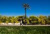 Image 7 of Arizona State University - Polytechnic Campus, Mesa