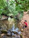Image 4 of Nature Reserve Nahal Amud, [missing %{city} value]
