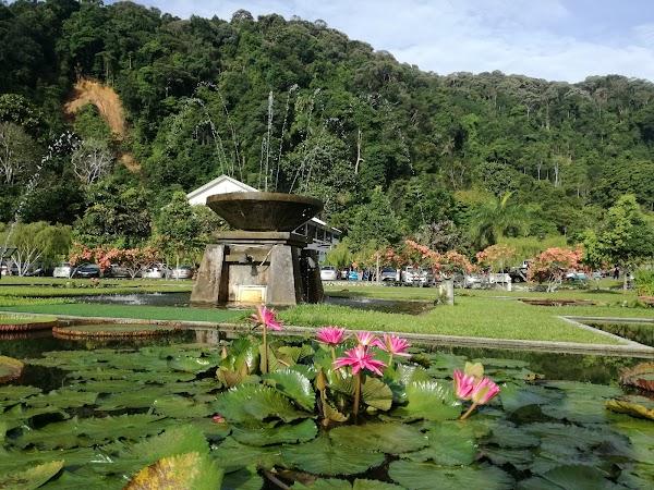 Popular tourist site Botanical Garden in Penang