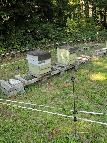 Snoqualmie Valley Honey Farm