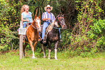 Wagon Wheel Horse Farm, Okeechobee, United States