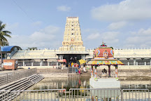 Sri  Varasidhi Vinayaka Swamy Temple, Kanipakam, India
