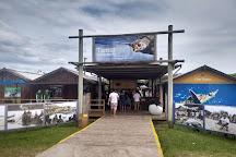 Fundacao Projeto TAMAR - Florianopolis, Florianopolis, Brazil