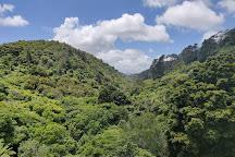 ZEALANDIA Ecosanctuary, Wellington, New Zealand