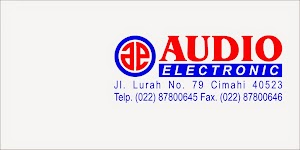 Audio Electronic