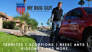 My Bug Guy Pest Solutions