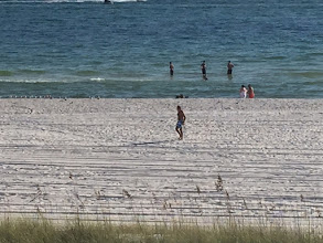 Photo: Bigfoot spotted at Panama City Beach