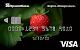 Visa **** 9010