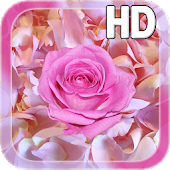 Rose Petals Live Wallpaper