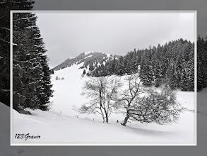 Photo: Le Suchet