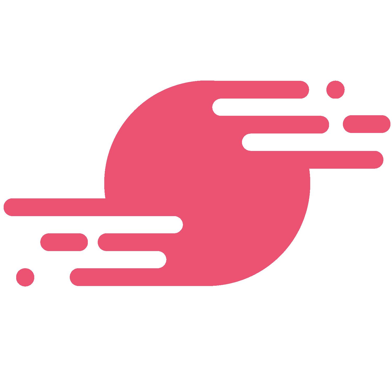 SpinupWP logo