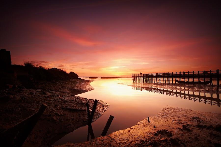 Sunrise on Mourisca by Carla Quelhas Lapa - Landscapes Sunsets & Sunrises