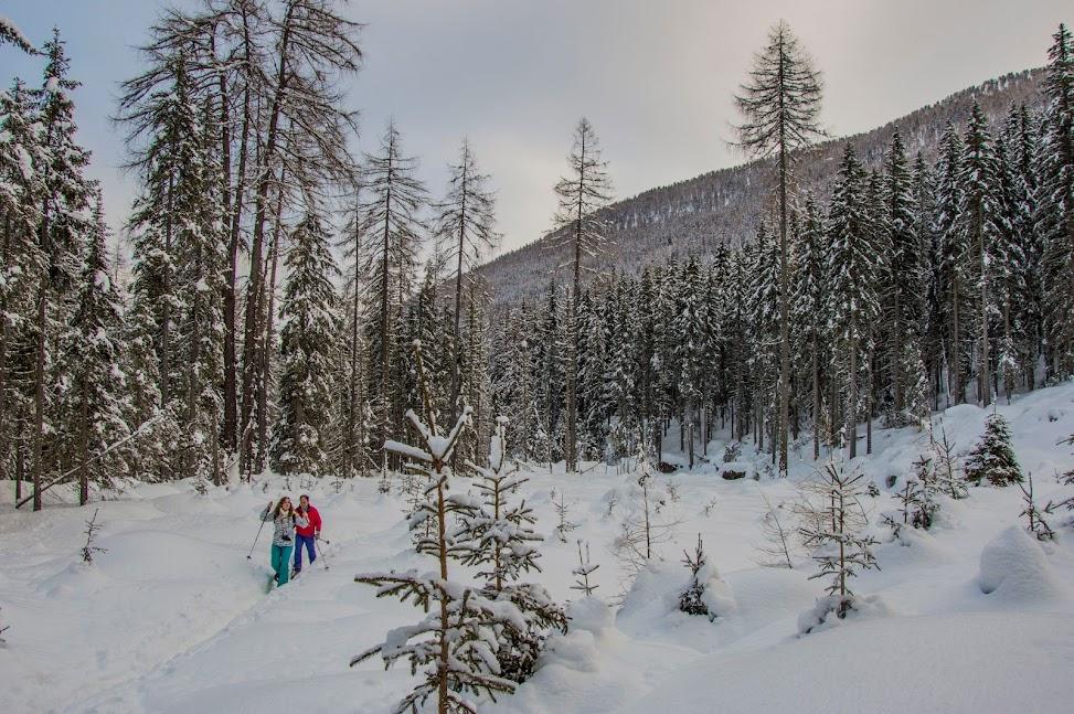 sneeuwschoenwandelen-wintersport