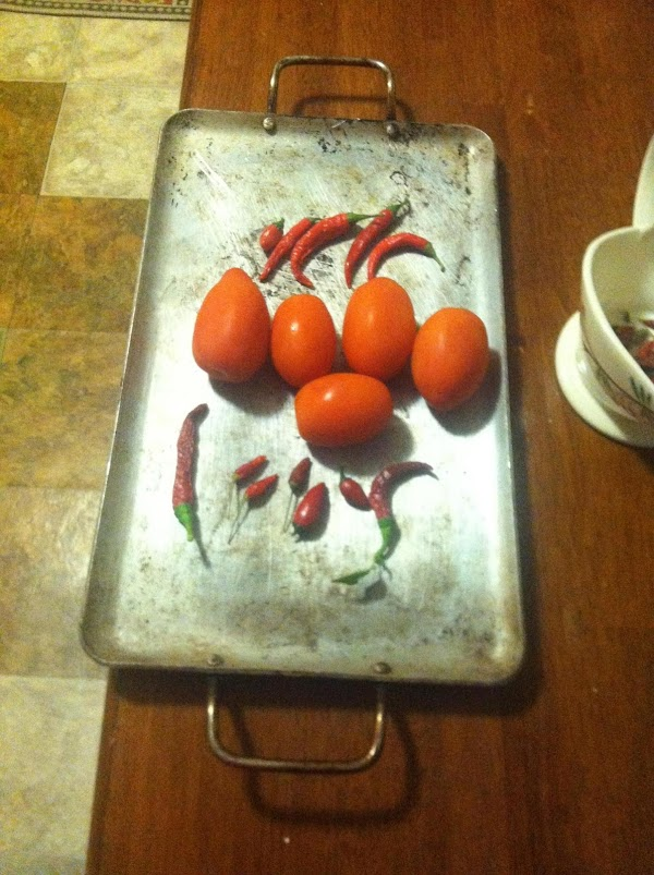 place your tomatoes and all your peppers on a heavy comal,or a broiling pan...