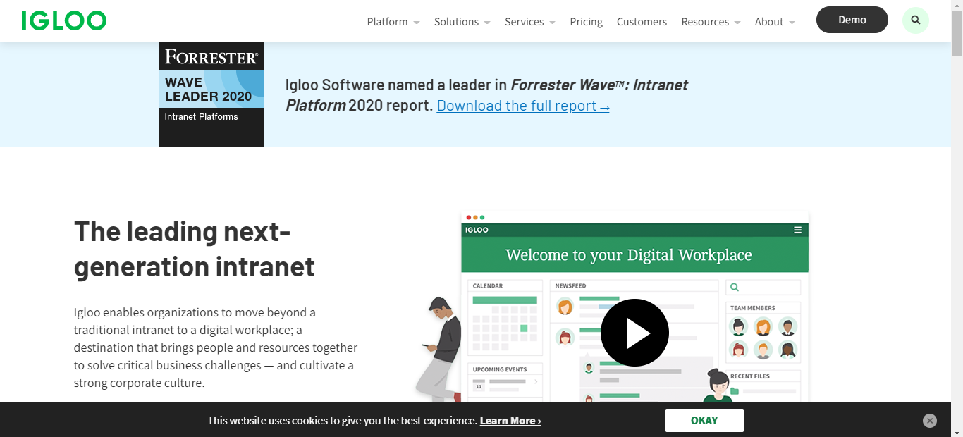 Igloo Knowledge Management Software