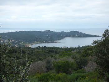 terrain à Coti-Chiavari (2A)