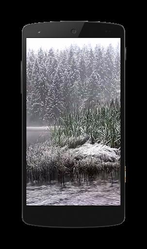 降雪ビデオLWP