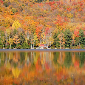 Fall in New England by Anastasiya Manuilov - Landscapes Mountains & Hills ( foliage, leaves, autumn, water, lake )