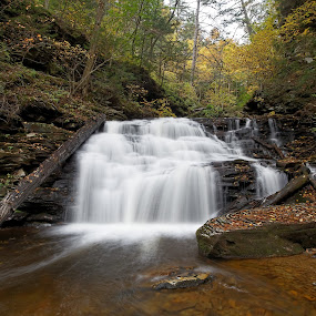 Mohican Falls in Autumn by Tim Devine - Landscapes Waterscapes ( falls trail, stream, luzerne county, waterfalls, mohican falls, kitchen creek, waterfall, pennsylvania, endless mountains, autumn, fall, appalachian mountains, ganoga glen, ricketts glen state park )