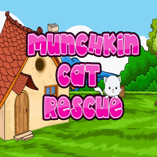 Munchkin Cat Rescue