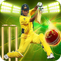Cricket Games 2016 Free 2.0 icon