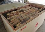 泰國抵港貨櫃檢獲受管制黃壇木材
