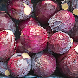 Fresh red cabbages on the street market stall by Ciddi Biri - Food & Drink Fruits & Vegetables ( digestive system, salad, cabbage, red cabbage, healthy life, vegetable, freshness, agriculture, agricultural, immune health, market stall, farming, healthy food, digestion, vegetarian, diet, organic, harvest, ingredient, natural, nature, cuisine, health, raw, leaf, food, vitamin, market, street market, nutrition, closeup, healthy, background, plant, purple, cancer, digestive health, fresh )